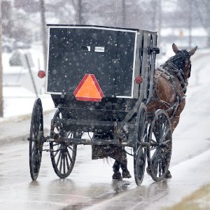 Amish horse and buggy vs innovation